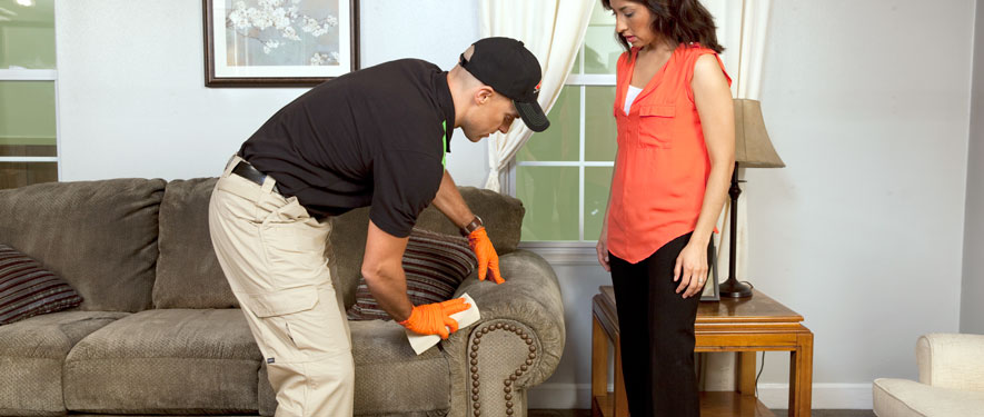 Grand Blanc, MI carpet upholstery cleaning