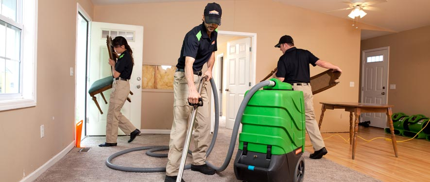 Grand Blanc, MI cleaning services